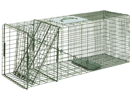 Duke #3 Single Door Cage Trap Steel Silver