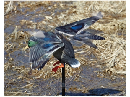 Edge by Expedite Rapid Flyer Lucky Duck Motion Duck Decoy Polymer