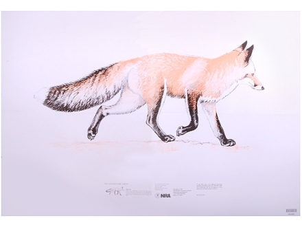 NRA Official Lifesize Game Target Red Fox Paper Package of 50