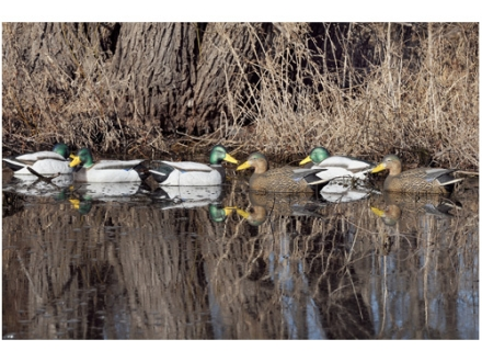GHG Pro-Grade Weighted Keel Duck Decoys Timber Pack of 6