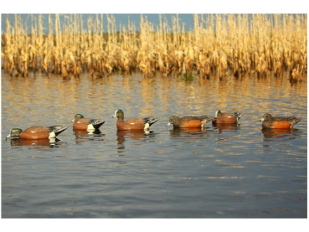 GHG Pro-Grade Weighted Keel Wigeon Duck Decoys Harvester Pack of 6