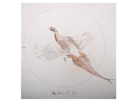 NRA Official Lifesize Game Target Pheasant Paper Package of 25