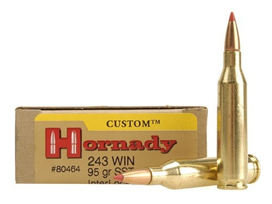 Hornady Custom Ammunition 243 Winchester 95 Grain SST Box of 20