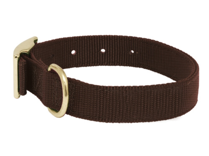 Mud River Scout Adjustable Buckle Dog Collar
