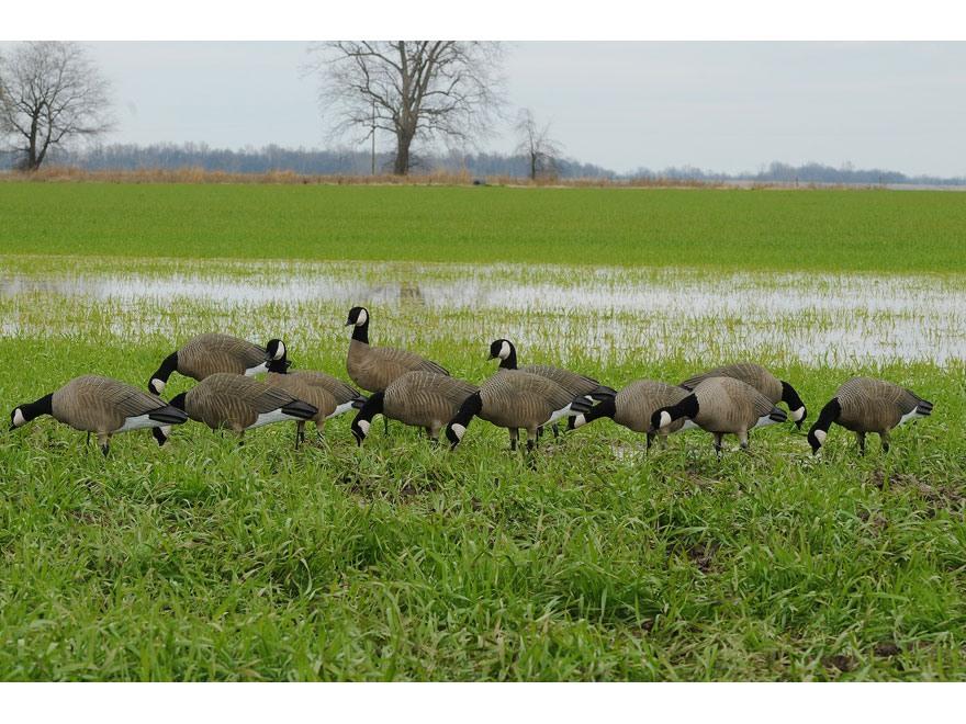 GHG Tim Newbold Signature Series Cackler Goose Decoys Harvester Pack of 12