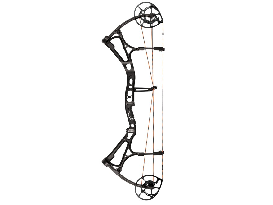 Bear Motive 6 Compound Bow