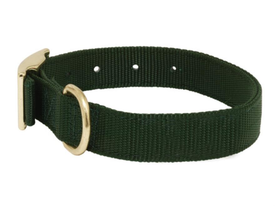Mud River Scout Adjustable Buckle Dog Collar