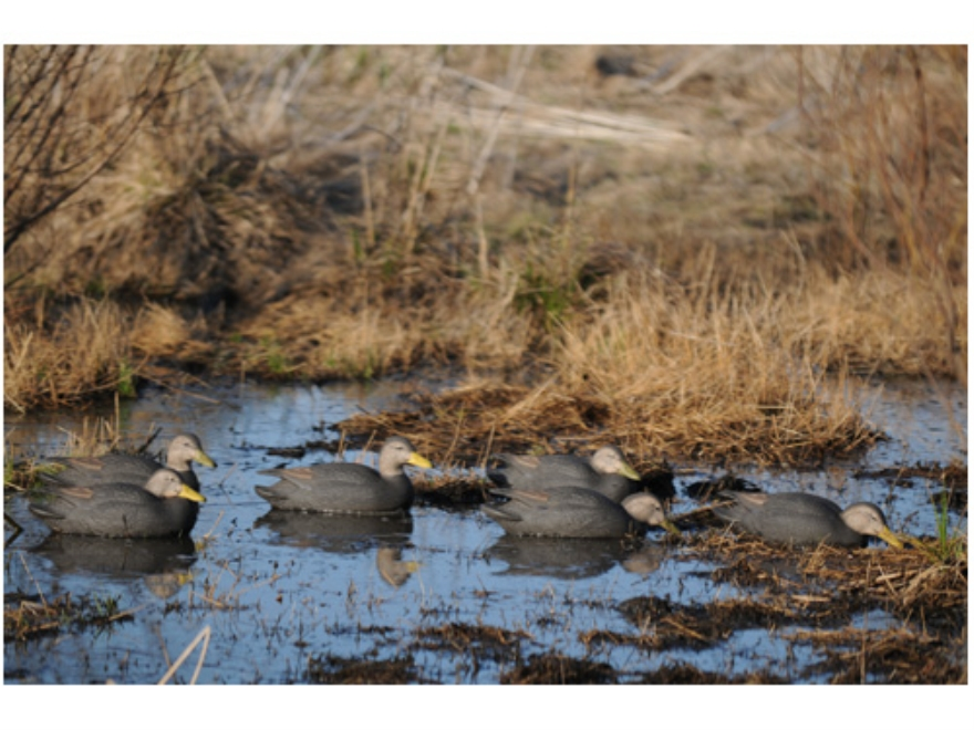GHG Pro-Grade Weighted Keel Black Duck Decoys Harvester Pack of 6