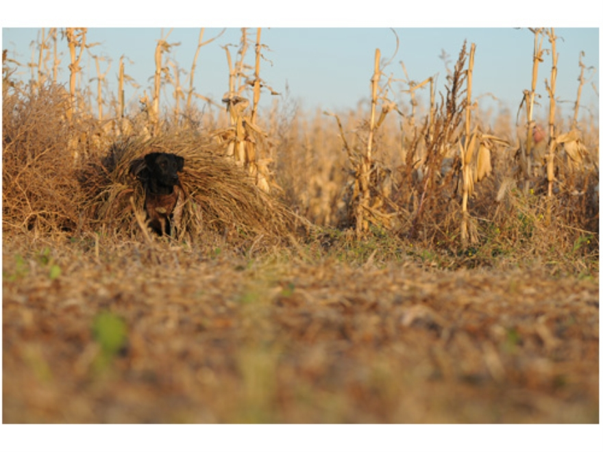 GHG Ground Force Dog Blind Ghillie Cover All Terrain Camo