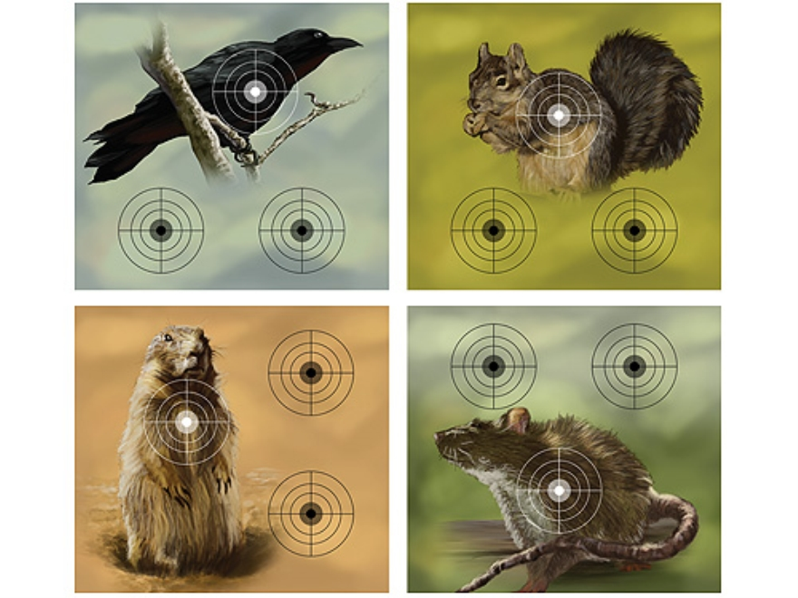 Crosman Varmint Airgun Target Pack Crow, Squirrel, Prairie Dog or Rat Target Paper Package of 20