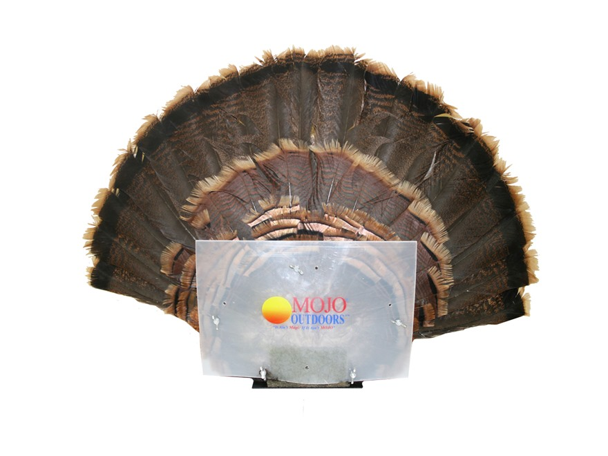 MOJO Fan Press Turkey Tail Drying Mount