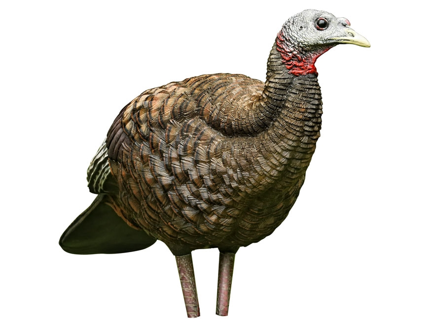 Avian x breeder hen decoy lifelike collapsible lcd turkey decoy new