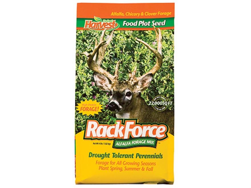 Evolved Harvest Rack Force Alfalfa Perennial Food Plot Seed 4 lb