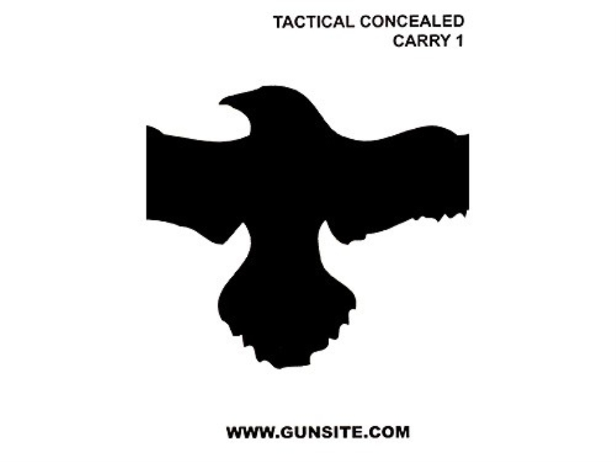 "Gun Video ""Gunsite Tactical Concealed Carry 1"" DVD"