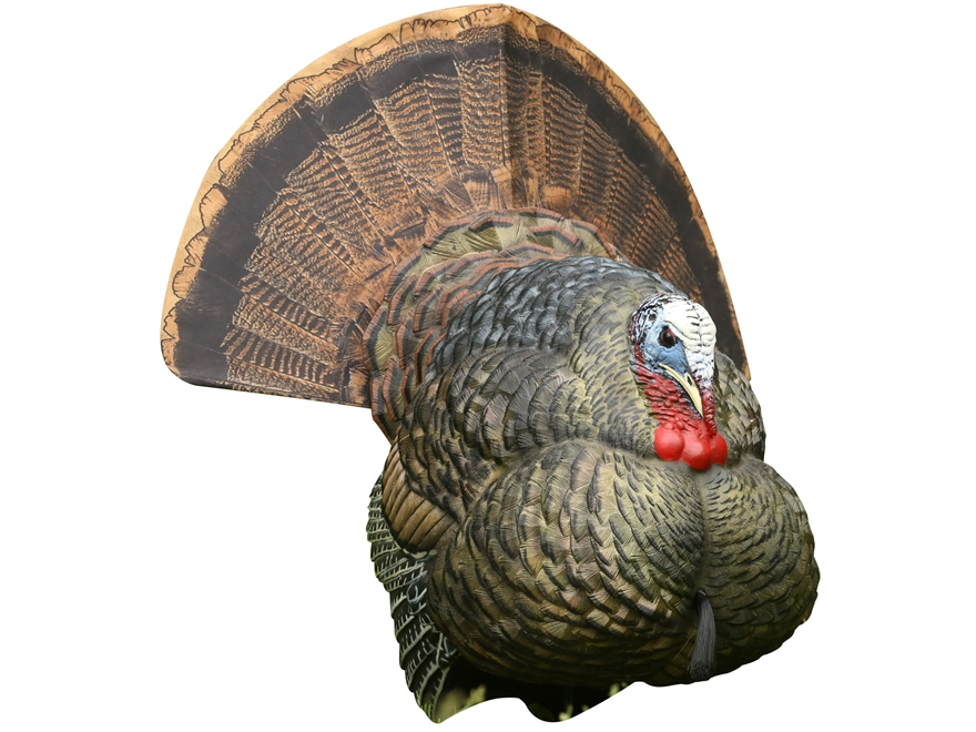 Avian-X LCD Strutter Turkey Decoy