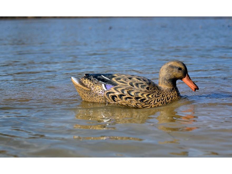 Higdon Swimmer Mallard Hen Motion Duck Decoy