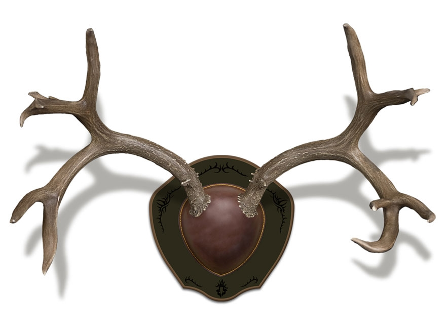 Mountain Mike's Rack Plaque Deer Antler Mounting Kit Wood