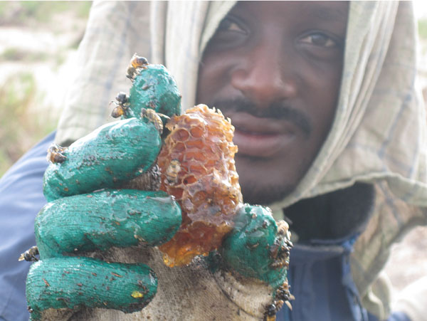 One of our trackers holds a small part of the prize; a wax honeycomb full of warm, sweet honey.