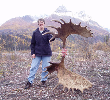 "For a perspective, Brenda is about 70"" tall.  This is a pretty nice set of moose antlers."