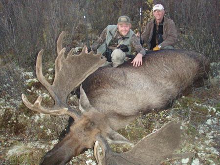 Dad and son; antlers still in velvet.