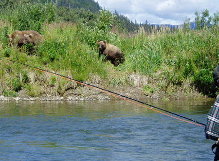 Fishing in Alaska's Bear Country