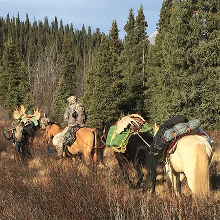 Matt Fleming is on horseback, his guide Levi Letkeman is on foot and Logan Young is out of sight up front. My  horse was never in a hurry, and I brought up the rear.