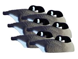 Higdon Full Size Half Shell Sleeper Pack Canada Goose Decoy Polymer Pack of 6