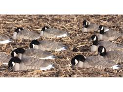 GHG Pro-Grade Honker Harvester Goose Decoy Shells Pack of 12