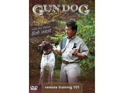Gun Dog: Remote Training 101 DVD