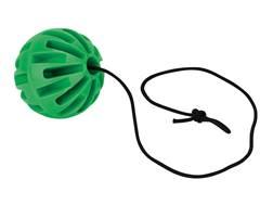 "Champion DuraSeal Ground Bounce Hanging Ball 3"" Ballistic Polymer Green"