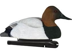 Avian-X Top Flight Canvasback Duck Decoy Pack of 6