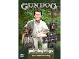 Gun Dog: Advanced Training: Pointing Dogs DVD