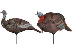 Dakota Decoy Turkey Breeder Pack Turkey Decoys Combo