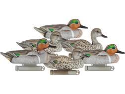 Dakota Decoy X-Treme Green Wing Teal Duck Decoy Pack of 6
