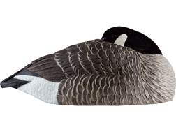Avian-X AXF Flocked Canada Sleeper Shell Goose Decoy Pack of 6