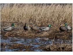 GHG Pro-Grade Flocked Full Body Mallard Duck Decoys Active Pack of 6