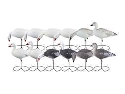GHG Pro-Grade Harvester Full Body Snow and Blue Goose Decoy Pack of 12