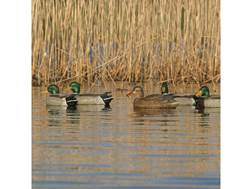 GHG Pro-Grade Mallard Duck Decoy Pack of 6