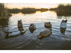 Tanglefree Pro Series Duck Decoy Weighted Keel Mallard Combo Pack Duck Decoy Pack of 6
