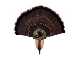 Walnut Hollow Country Turkey Mounting Kit King of Spring