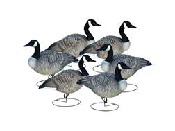 Final Approach Livecraft Relaxed Full Body Canada Goose Decoy Pack of 6
