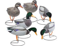 Final Approach Gunner HD Field Full Body Flocked Head Mallard Duck Decoy Pack of 6