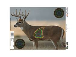"Champion VisiColor Real Life Deer Targets 18"" x 12"" Paper Pack of 12"