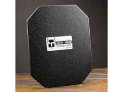 "AR500 Body Armor Stand Alone Lightweight Ballistic Plate III+ Back Plate Square Cut 10"" x 12"" Fla..."