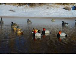 GHG Pro-Grade Redhead Duck Decoy Pack of 6