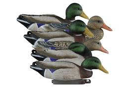 Higdon Full Size Foam Filled Mallard Duck Decoy Polymer Pack of 6