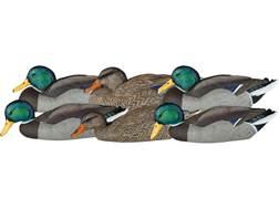 Dakota Decoy X-Treme Dabbler Mallard Duck Decoy Pack of 6