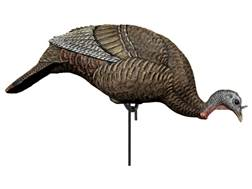 Dakota Decoy Feeding Hen Turkey Decoy