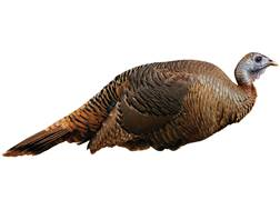 Montana Decoy Spring Fling Hen Turkey Decoy