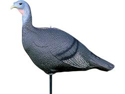 Feather Flex Turkey Hen with Stake Turkey Decoy